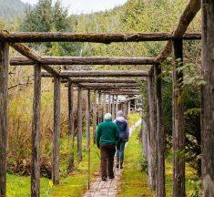 Visit Cougar Annie's Garden Near Tofino