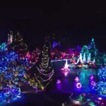 VanDusen Christmas lights.