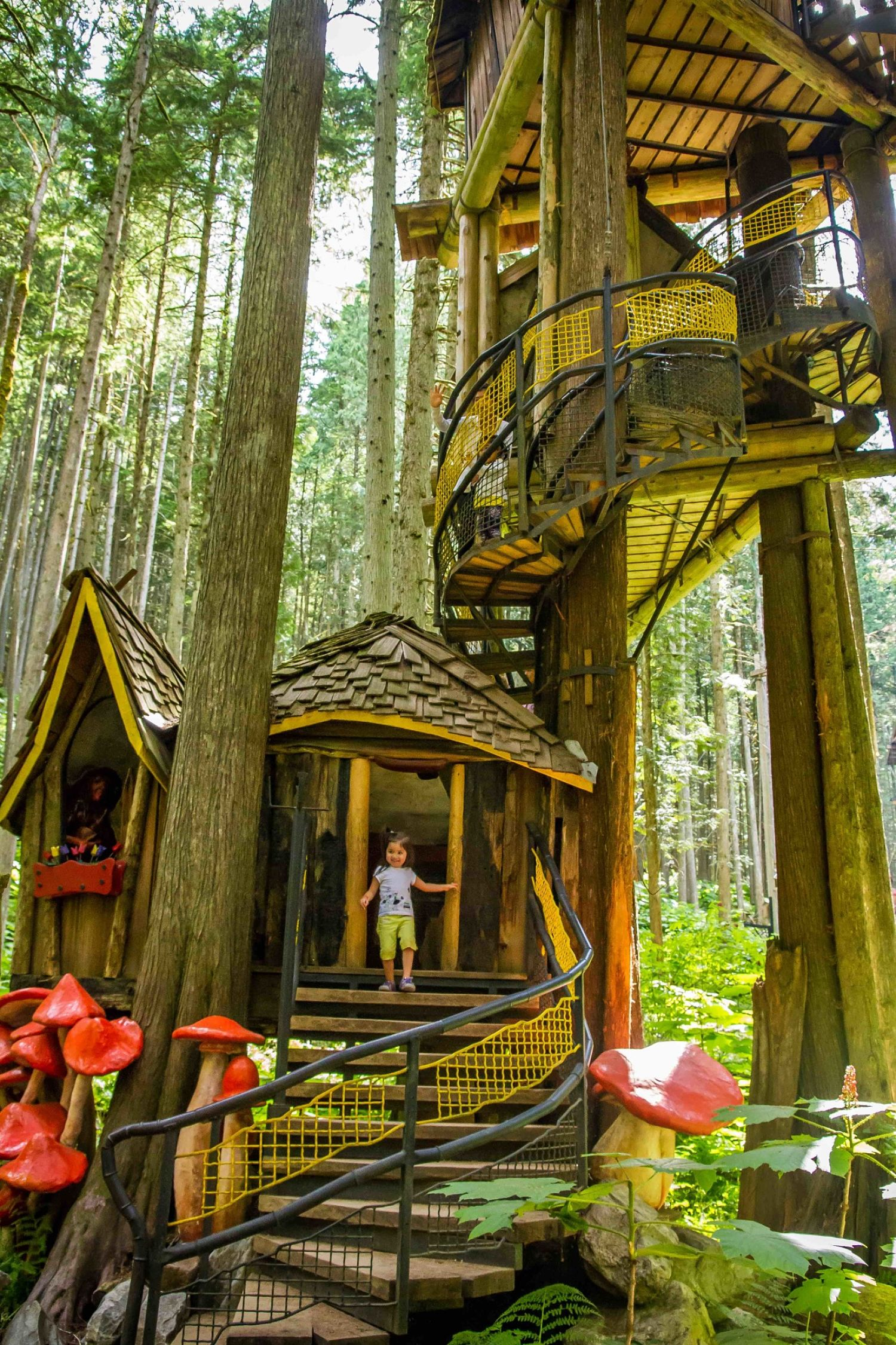 Travel To The Enchanted Forest • British Columbia Magazine