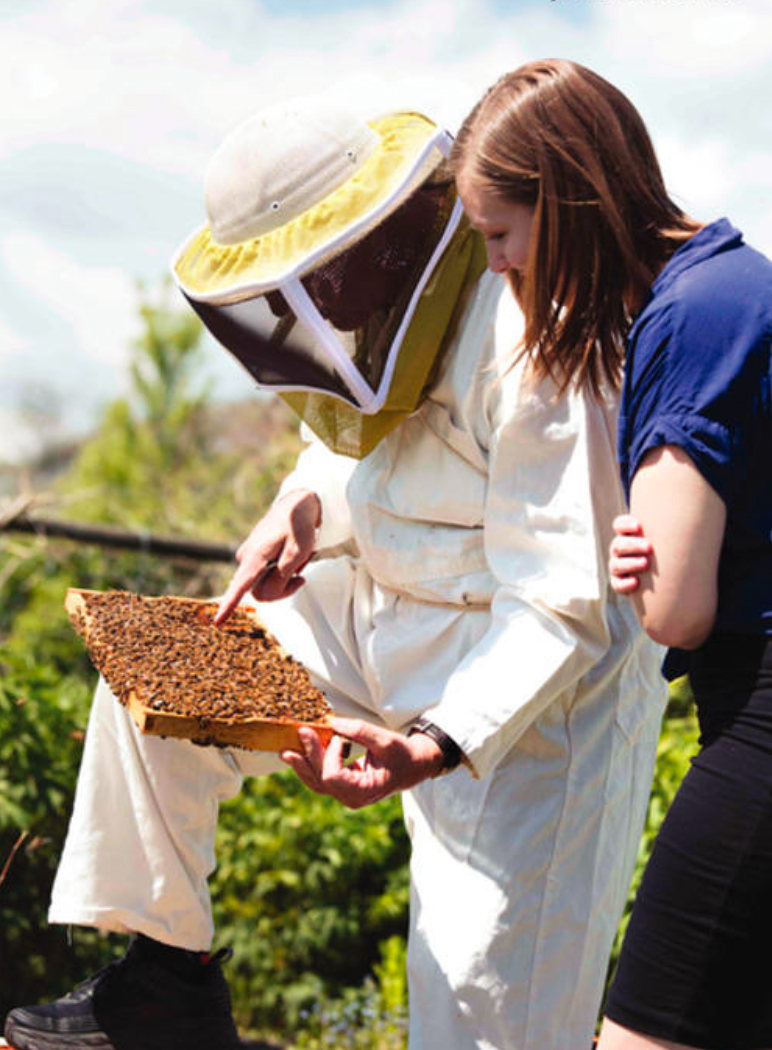 The Okanagan's honey bee colonies can produce up to 90 kilograms of honey in just a few months.